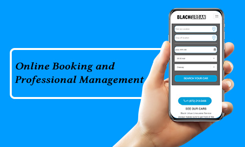 Online-Booking-and-Professional-Management